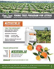 Young Tree Program KPHITE RX thumbnail