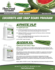 cucurbits and snap beans thumbnail