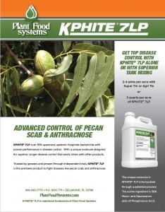 Control-of-Pecan-Scab-and-Anthracnose